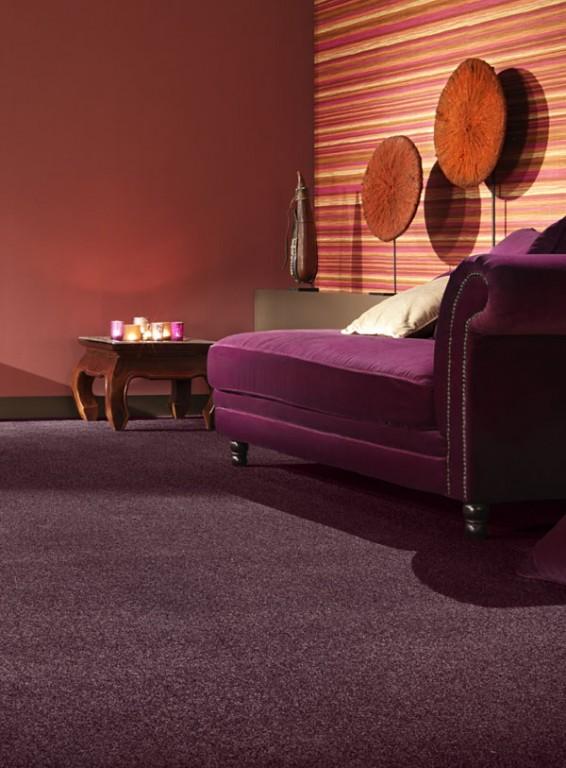 Dali Saxony Carpet Tapi Carpets Amp Floors