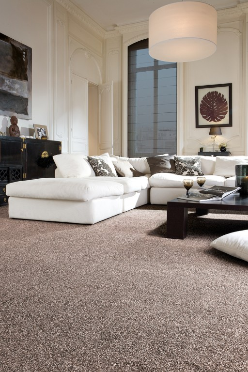 Tapi Fraser Twist carpet