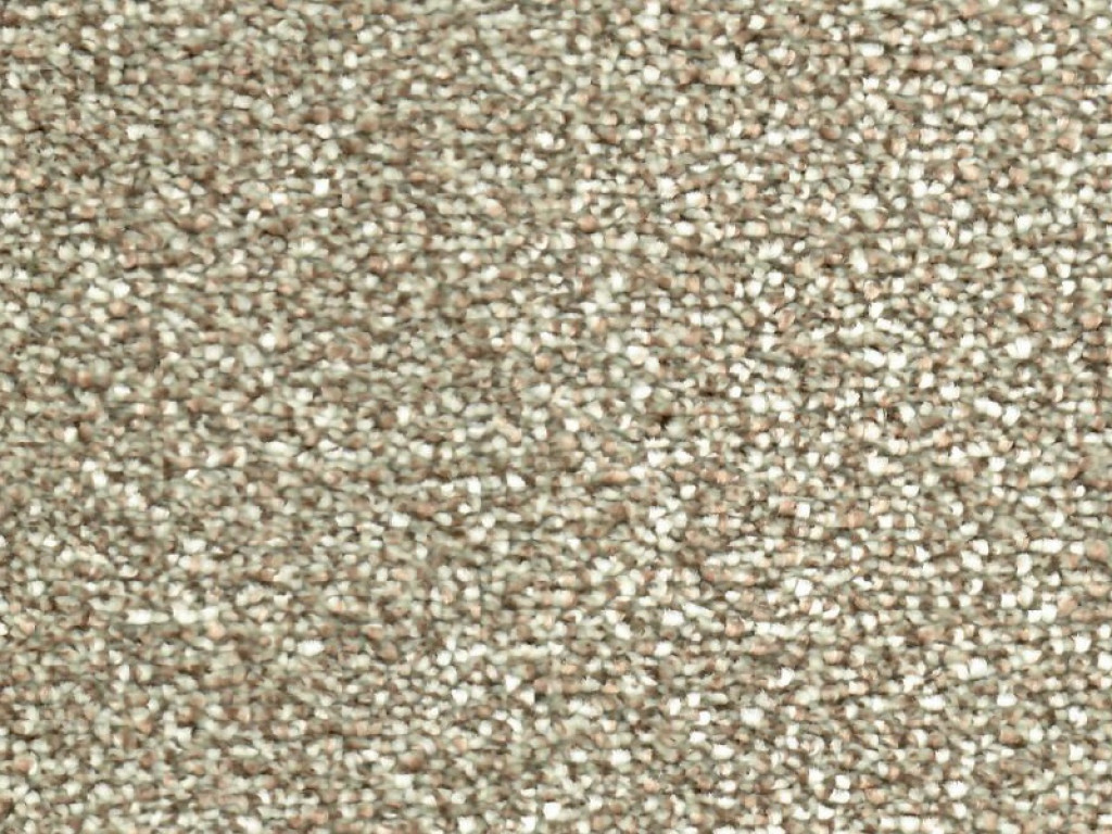 Penshurst Saxony Carpet Tapi Carpets Amp Floors