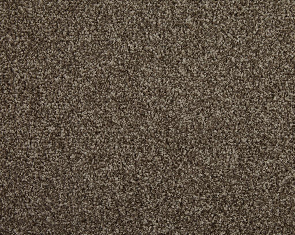 Venus Twist Carpet Tapi Carpets Amp Floors