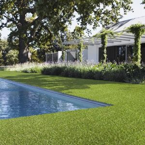 Tapi Artificial Grass